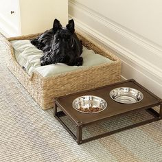 dog bed made from hemp and recycled materials #ecofriendly