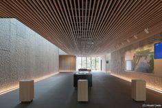 KOSHINOKUNI Museum of Literature - Coelacanth and Associates