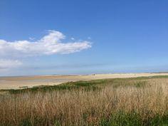 Terschelling groene strand