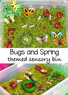 This bugs and spring themed sensory bin looks so inviting. Toddlers and preschoolers wont be able to keep their hands off these ladybugs and butterflies. Older kids will love the imaginary play that this kids activity will provide. The post also contains