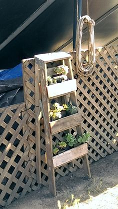 Just couldn't throw out the old wooden ladders. They did make fun succulent holders though.