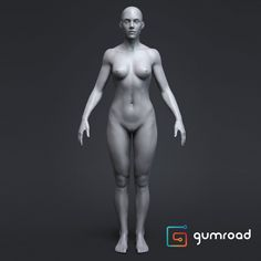 Anatomy Female Tool Reference for Artists !, Pascal Ackermann on ArtStation at https://www.artstation.com/artwork/ZX6ax