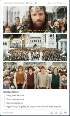 Pippin XD