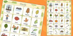 Herfs / Afrikaans Autumn vocab poster Afrikaans Language, School Posters, Educational Games, Worksheets For Kids, Grade 1, Preschool Activities, Homeschooling, Vocabulary, South Africa