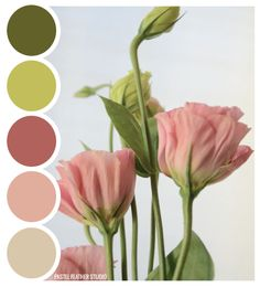 FLOWER PALETTE - color palette   Pastel Feather Studio