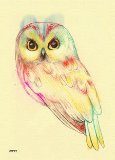owl. Would be pretty tattoo