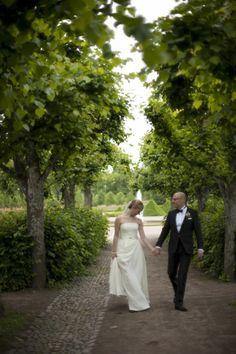 21 botanical gardens modern wedding portrait