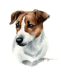 Jack Russell Terrier Art Print by Artist DJ Rogers Chien Jack Russel, Jack Russell Terriers, Jack Russell Dogs, Cairn Terrier, Bull Terrier Dog, Dog Signs, Pembroke Welsh Corgi, Dog Paintings, Dog Portraits