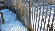 Beach fence covered in snow... not sand. :: January 22, 2014 :: #snOBX