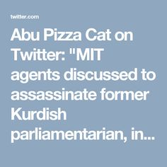 "Abu Pizza Cat on Twitter: ""MIT agents discussed to assassinate former Kurdish parliamentarian, in Holland.Any idea who she might be?https://t.co/ePSJYJN6z9 @curdistani"""