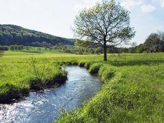 River running through meadow in Bayern, Bavaria, Germany Field Wallpaper, Background Hd Wallpaper, Tree Wallpaper, Mac Wallpaper, Nature Wallpaper, Mobile Wallpaper, Tarot Gratis, Ferrat, Bavaria