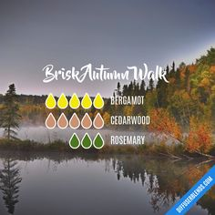 Brisk Autumn Walk — Essential Oil Diffuser Blend