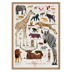 """African Wildlife"" is a new poster artwork by the Hamburg illustrator Dieter Braun. On many journeys Dieter Braun studies in detail animals of all Safari Bedroom, Animal Bedroom, Design Japonais, African Babies, African Theme, Jungle Nursery, Bird Poster, Art Prints Online, Affordable Wall Art"