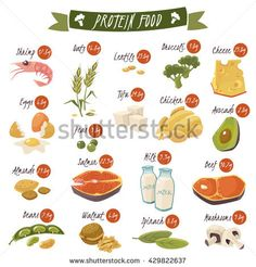 Buy Protein Rich Food Flat Icons Set by macrovector on GraphicRiver. Best protein food icons collection for healthy diet with salmon beans almonds and chicken isolated vector illustratio. Protein Muffins, Protein Snacks, Good Protein Foods, Protein Dinner, Protein Desserts, Best Protein, High Protein Recipes, Healthy Recipes, Fish Oil Benefits