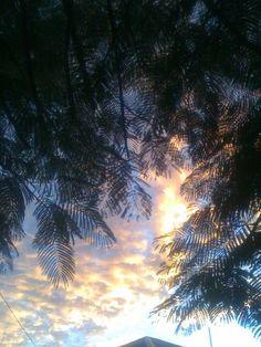 Autumn sunrise in Brisbane - the golden glow.