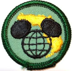 Disney World, Girl Scout Anniversary Girl Scout Council, Girl Scouts Usa, Girl Scout Patches, Girl Scout Badges, Girl Scout Juniors, 70th Anniversary, Merit Badge, Girl Guides, Vintage Girls