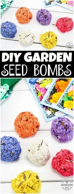 diy seed bombs tutorial for the kids