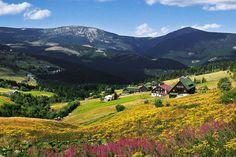 Krkonoše / Giant Mountains / Czech Republic