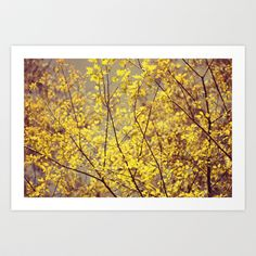 mellow yellow Art Print by ingz