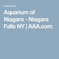Aquarium of Niagara - Niagara Falls NY   AAA.com