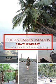 The Andaman Islands 5 Days Itinerary - The Andaman and Nicobar Islands are in East India and Port Blair is the capital. The captivated beauty of Andaman attracts many tourists every year. This destination is best for adventure travel and must-visit for al Ways To Travel, Places To Travel, Travel Destinations, Places To Visit, Travel Tips, Travel Advice, India Travel Guide, Asia Travel, Solo Travel