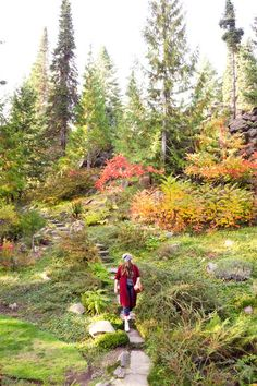 Fall foliage at Ohme Gardens, a park that is a fun thing to do in Wenatchee, WA. Chances are you'll be passing by this town on your way to Lake Chelan, Winthrop, and Leavenworth. A lot of people don't stop, but that's a mistake! There are great wineries, restaurants, and shops in Wenatchee worth a visit. Stuff To Do, Things To Do, Seattle Travel, Like A Local, Travel Planner, Weekend Getaways, Travel Usa, Kayaking, Wenatchee Washington