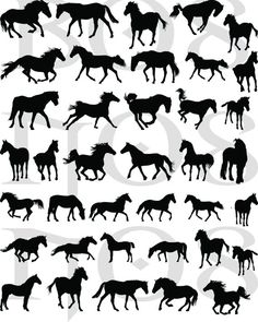 38 DECALS Black HORSE SILHOUETTES  Nail Wraps Nail by NorthofSalem, $4.99