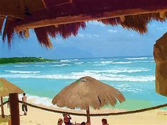 cozumel single men Secrets aura cozumel,  so, say no to the sales pitch, take pants for your men, and go to secrets aura cozumel and have a fantastic and relaxing time.