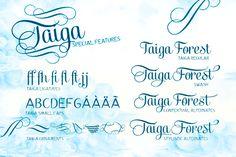 Taiga 2 Taiga | Font | Free Download