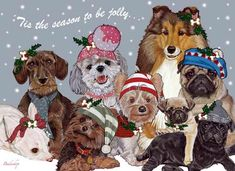 Dogs Snow Babies Christmas Cards $14.95