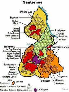 Sauternes wine region