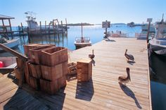 Cortez Historic Fishing Village in Bradenton, Florida has been a center of commercial fishing since the 1880's