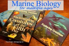 Marine Biology Studies for Multiple Ages at www.hodgepodge.me