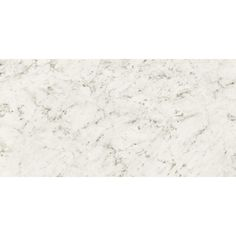 is the leader in quality Bianco Carrara Polished Porcelain Tiles at the lowest price. We have the widest range of PORCELAIN products, with coordinating deco, mosaic and tile forms. Granite Tile, Carrara Marble, Granite Countertops, Polished Porcelain Tiles, Porous Materials, Small Pools, Mosaic Tiles, Collection, Bathroom
