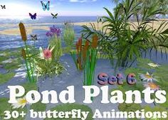 plants in a pond - Google Search