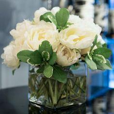 Cream White Tulip Peony Cube - NDI