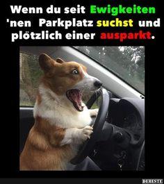 Wenn du seit Ewigkeiten 'nen Parkplatz suchst..