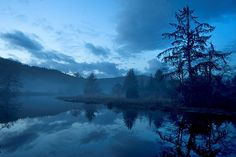 """Misty Blue"" by Larry Adreasen on Flickr"