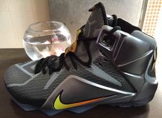 on sale 332ef 23e48 The Nike LeBron 12 Flight is the latest Nike LeBron 12 to surface that  looks to be a special edition release from Nike Basketball. Nike LeBron 12  Flight is