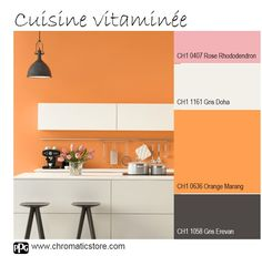96 Images Succulentes De Chromatic Orange Inspirations Et Harmonies