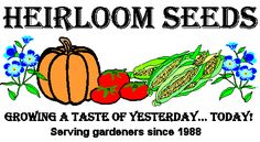 HEIRLOOM SEEDS - over 1400 varieties of heirloom (non-hybrid) seeds including heirloom vegetable seeds, heirloom flower seeds and heirloom herb seeds.