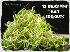 ~~Super foods!  It is sooo easy to sprout. They are fresh, delish & I buy organic, so very healthy!~~