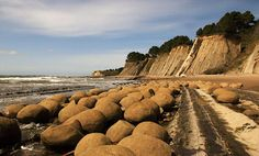Bowling Ball Beach, California.  Uniform sized, shaped and spaced boulders.