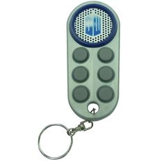 Doctor Who Electronic Key Ring Fob Doctor Who,http://www.amazon.com/dp/B003XQNAGE/ref=cm_sw_r_pi_dp_fKOKsb175WFS0Y9S