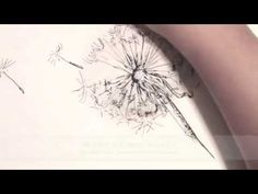How to Draw a Dandelion Live Drawing in Ink - YouTube