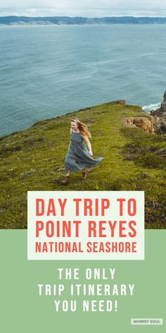 Point Reyes is basically the USA's version of Ireland. This is your perfect Point Reyes day trip guide + free Itinerary! San Francisco Hikes, San Francisco Travel, California National Parks, California Dreamin', Northern California, Weekend Trips, Day Trips, West Coast Living, Travel Pictures