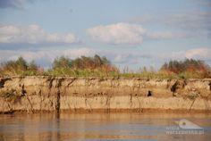 Urwisty brzeg rzeki - miejsce gniazdowania zimorodka (Fot. Ewa Kominek)