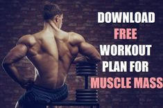7 Best Exercises to Increase Testosterone - Muscles Magician Free Workout Plans, Workout Routine For Men, Gym Workout Tips, Fun Workouts, Best Forearm Exercises, Forearm Workout, Best Testosterone Supplements, Boost Testosterone, Muscle Gain Diet