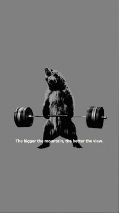 Just a bear working out :) #iPhone #wallpaper