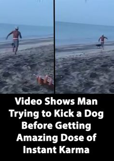 Video Shows Man Trying to Kick a Dog Before Getting Amazing Dose of Instant Karma